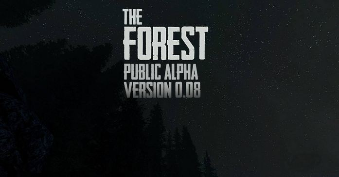 forest0.08