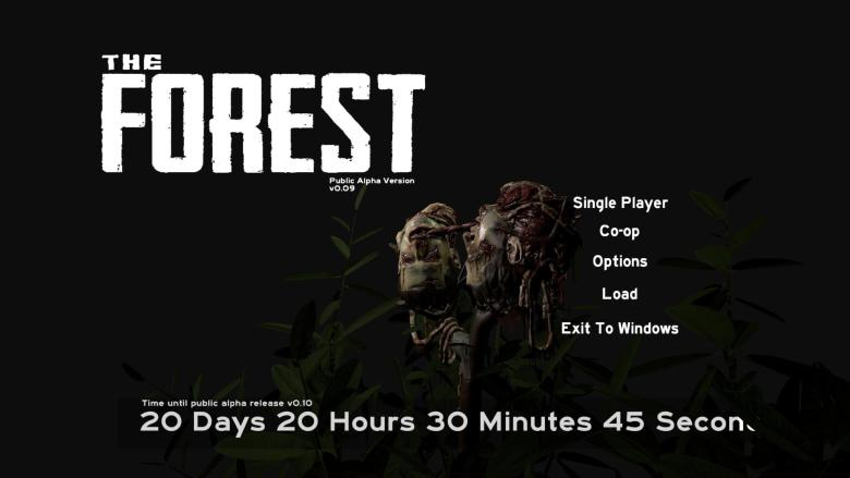 Руководство Запуска The Forest По Сети - фото 9