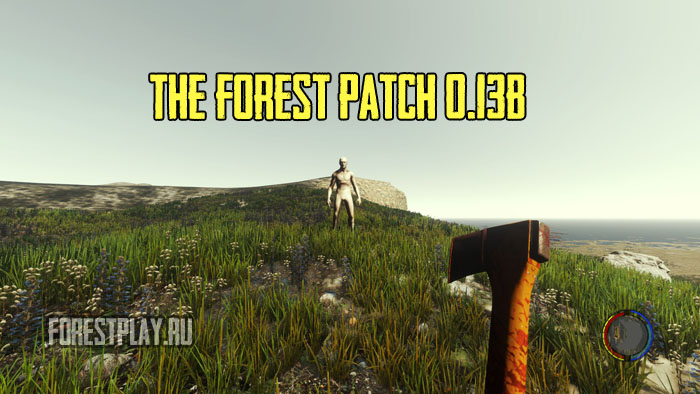 forest13b